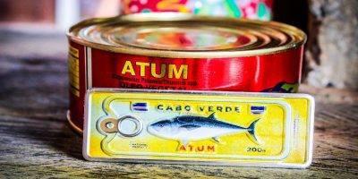 Placa Aluminio Cabo Verde Micro and Magnet Atum de Cabo Verde - Ocean Plates Placas em Aluminio